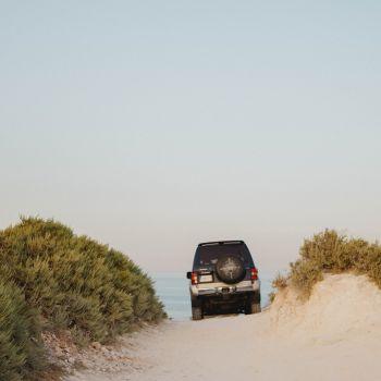 Canva - Black Car Traveling on Sand Ground Beside Green Plants